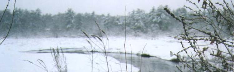 Winter_RMB